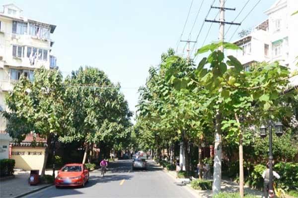 上海静安区延长中路561弄2号楼送花