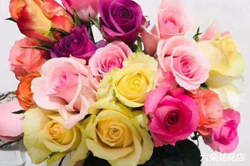 18枝玫瑰的花语是什么