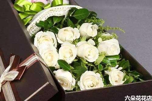 11朵白玫瑰的花语是什么