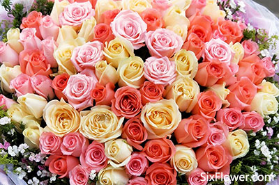 七夕节网上如何订玫瑰花?这样做,今年七夕节送花订花很容易!