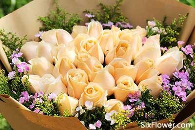 七夕节情人节送花,给她送上你秋天里的第一份爱的温暖!