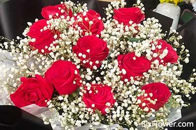 代表一生相伴的意思送什么花好?主要是11朵玫瑰花!