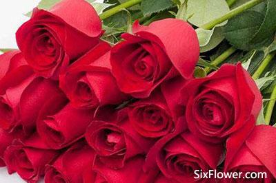 七夕节送18朵玫瑰代表什么意思?