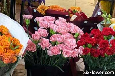 光棍节送玫瑰花