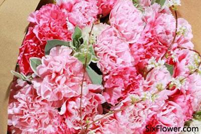 亲人生日送花,亲人生日送什么花?