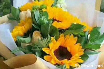 同学生病送花