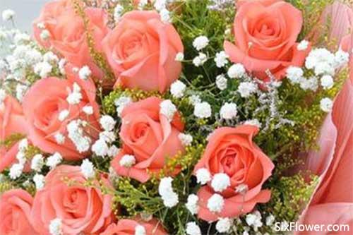 七夕节送花的寓意,七夕节要送花的朋友要仔细看哦!