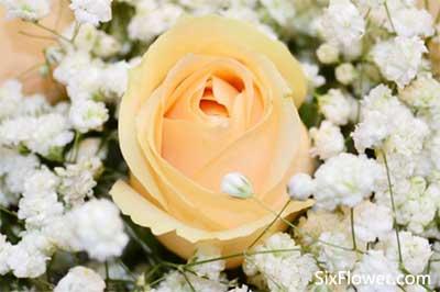 青岛花店送花实拍,青岛实拍鲜花看得见的美好!