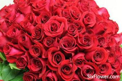 收到97朵玫瑰花是什么意思?97朵玫瑰花有哪些款式?