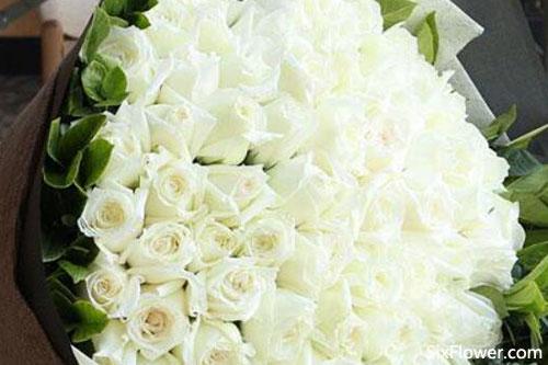 白玫瑰和红玫瑰混搭的花束有哪些?