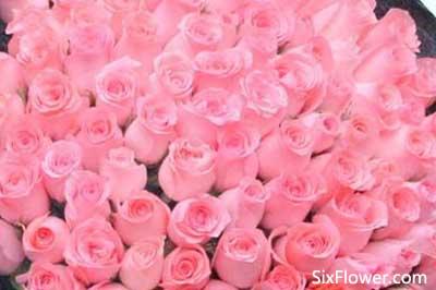 表白可以送粉玫瑰吗?粉玫瑰代表什么意思?