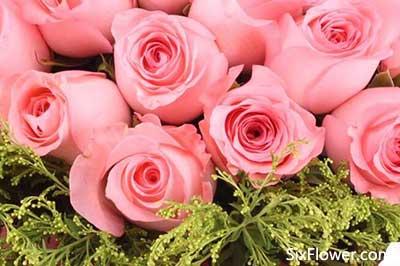 玫瑰花与勿忘我搭配代表什么意思?玫瑰花与勿忘我的搭配款式有哪些?