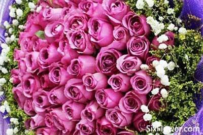 情人节花束,情人节哪些花束图片?