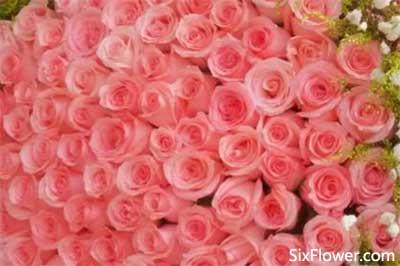 未确定关系的女朋友情人节送花合适吗?送什么花好?