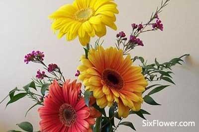 生日送花讲究多,来讲讲生日怎么送花?