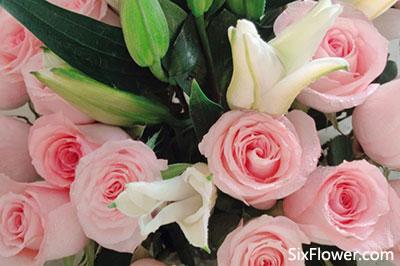 情人节送花必看,情人节如何送花?