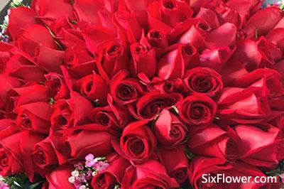 情人节的红玫瑰花束,情人节红玫瑰花束的图片