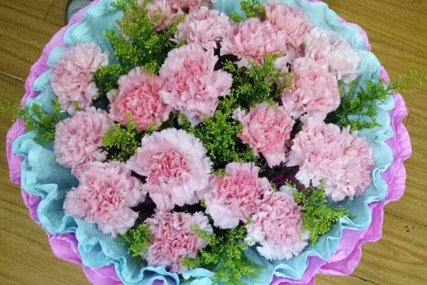 康乃馨的花语是什么?