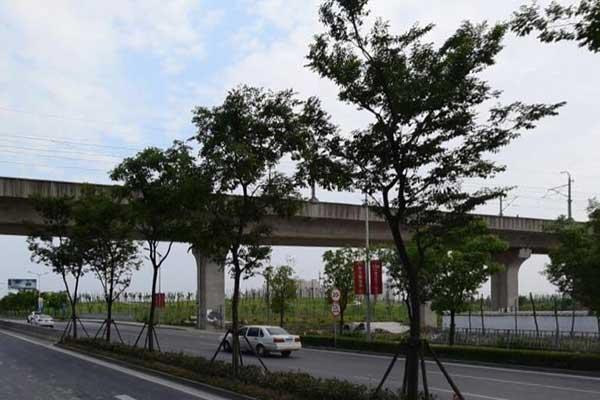 上海市嘉定区翔方公路沁园别墅送花