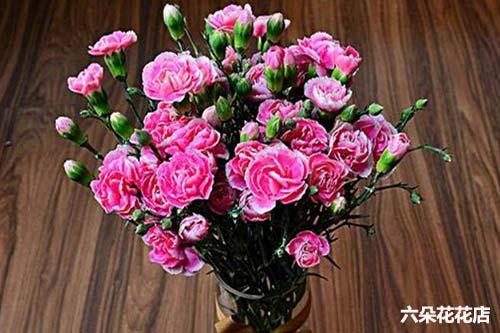 妈妈生日送什么花