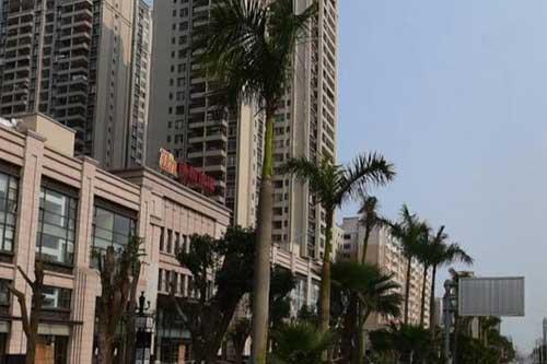 湛江中南酒店花店