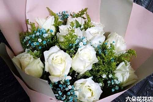11朵白玫瑰多少钱