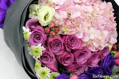 21朵紫玫瑰的花语是什么?21朵紫玫瑰代表什么意思?
