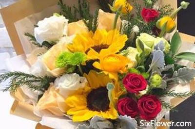 让女孩高兴的花是什么花?同时代表喜欢她的花是什么花?