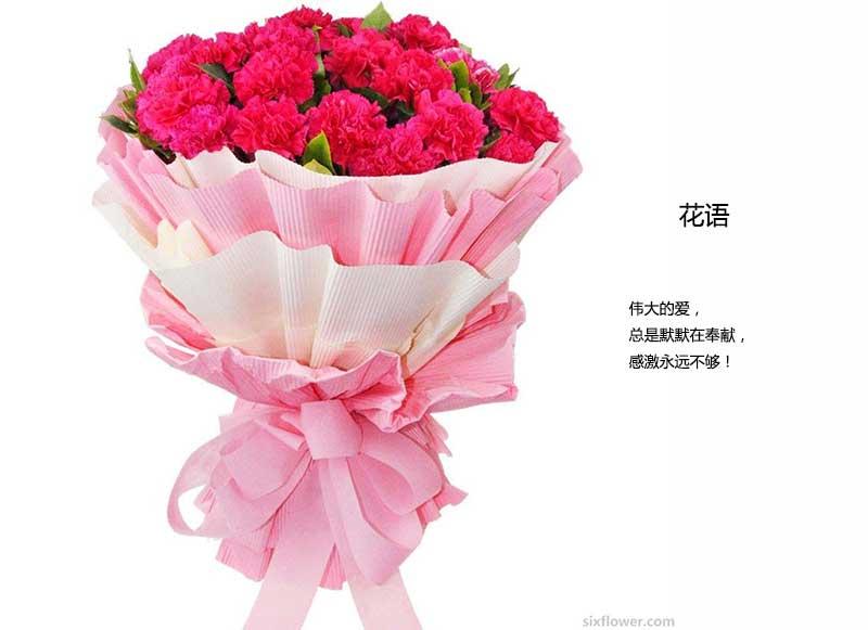 19枝红色康乃馨,绿叶间插