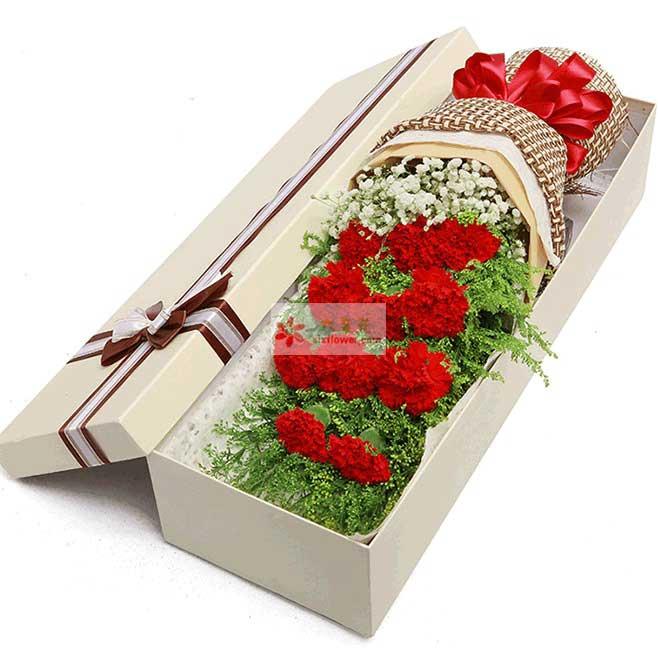 11支红色康乃馨,黄英丰满,满天星点缀