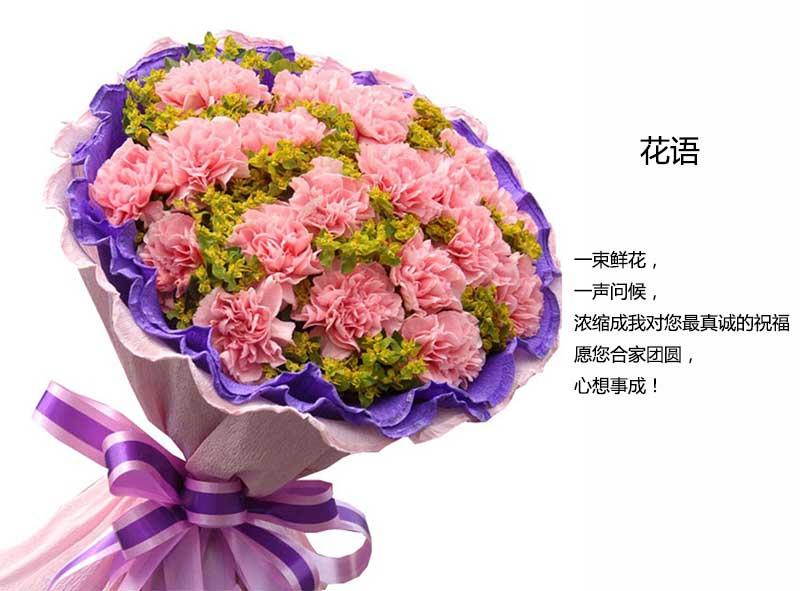 19枝粉色康乃馨搭配绿叶;