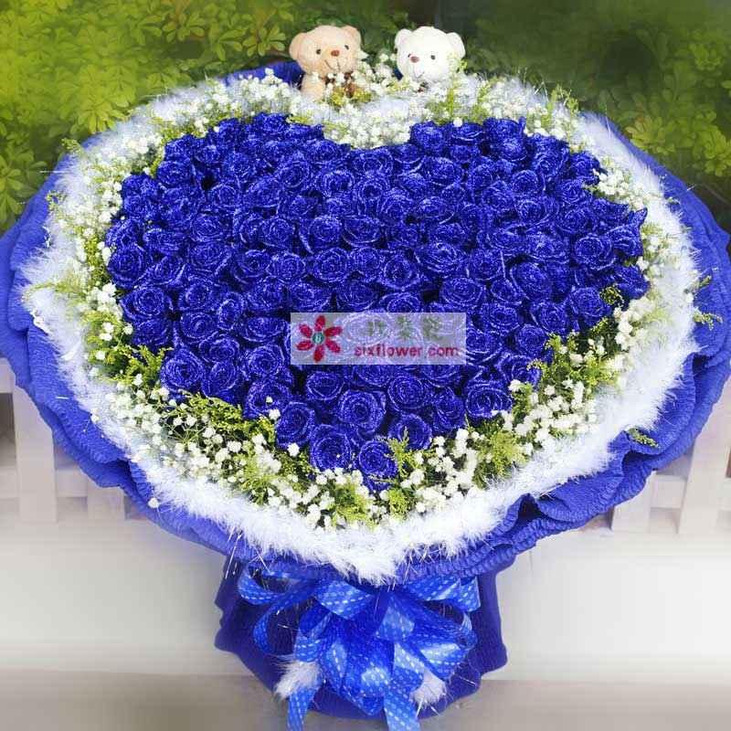 99朵蓝玫瑰心形造型,加拿大黄莺、满天星外围,外面围一圈白色羽毛,随机赠送两只可爱小公仔
