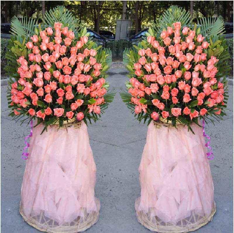 每只花篮100朵粉玫瑰,适量栀子叶点缀,其他配叶衬底