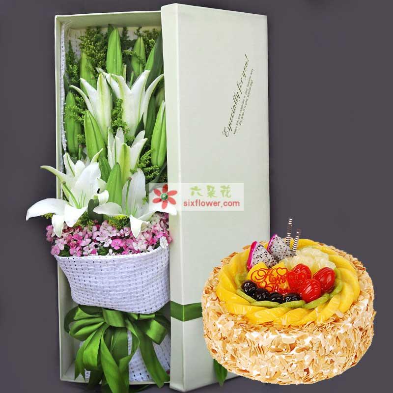 11朵白色多头香水百合,石竹梅搭配,8寸蛋糕;