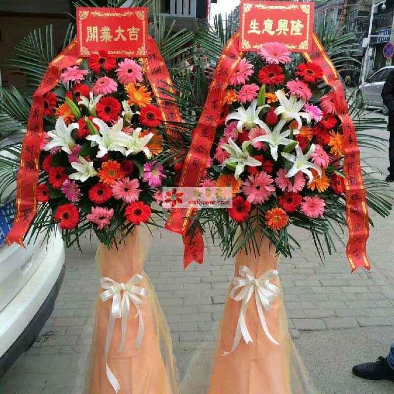 8朵白色百合,各色太阳花,散尾葵;