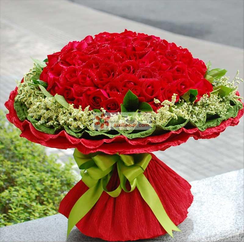 红玫瑰99枝,绿叶、情人草/满天星环绕