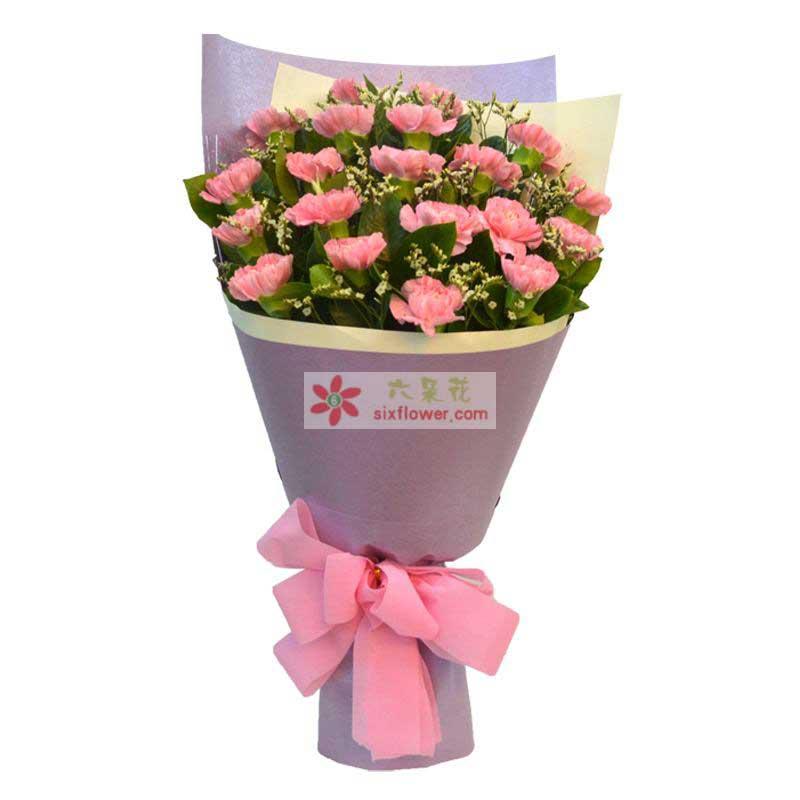 粉色康乃馨20支,水晶草、栀子叶搭配