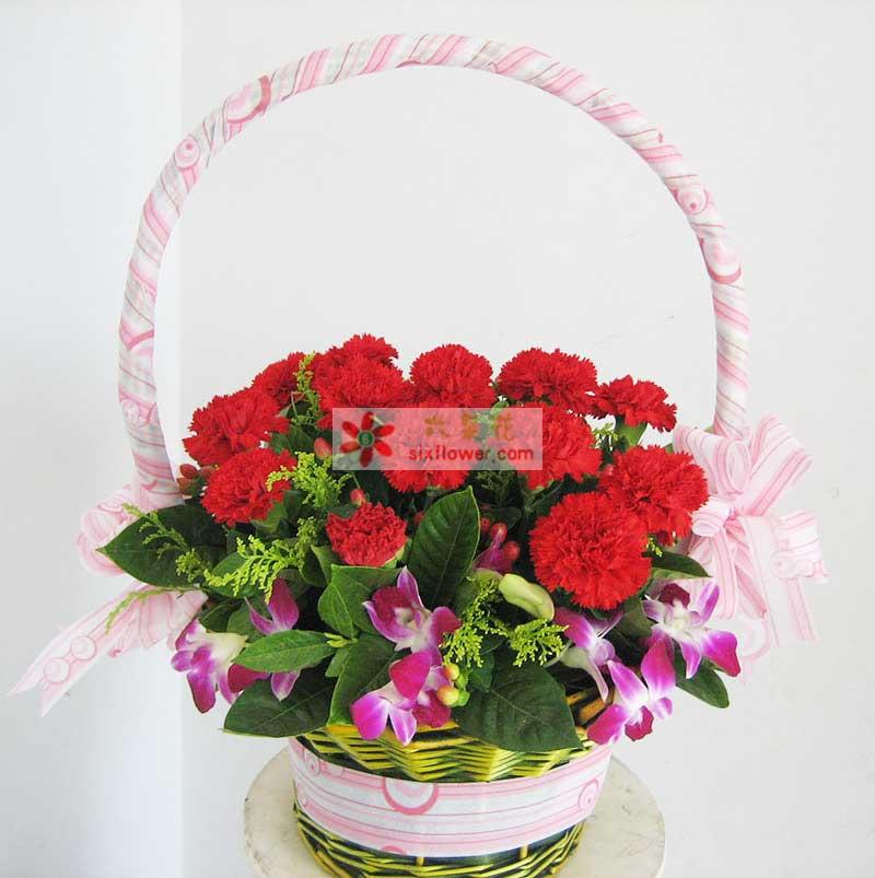 红色康乃馨19枝,洋兰、栀子叶、黄莺等搭配;