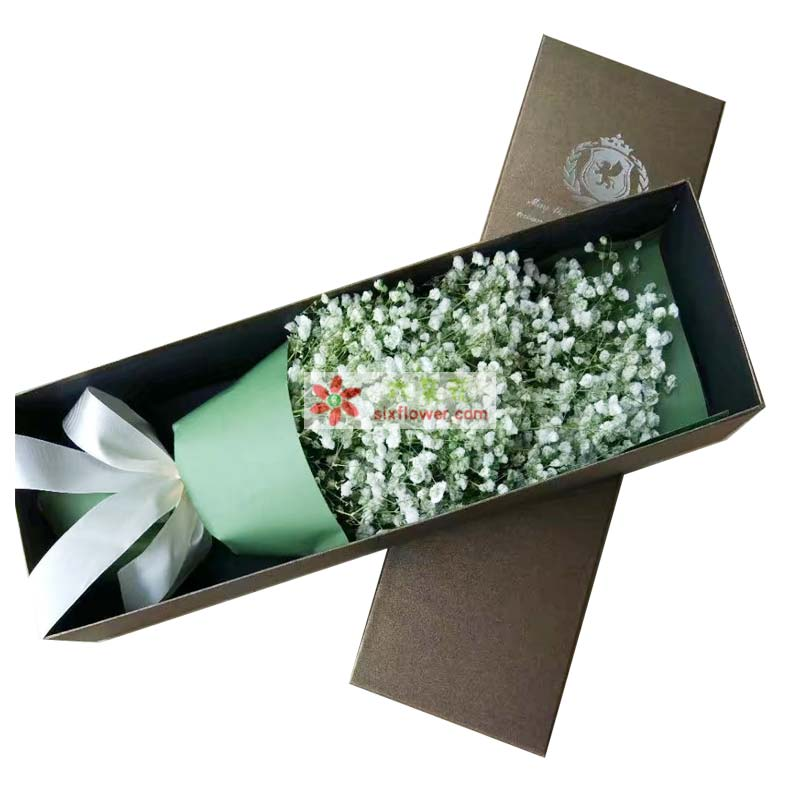 满天星花束,单面绿色系包装