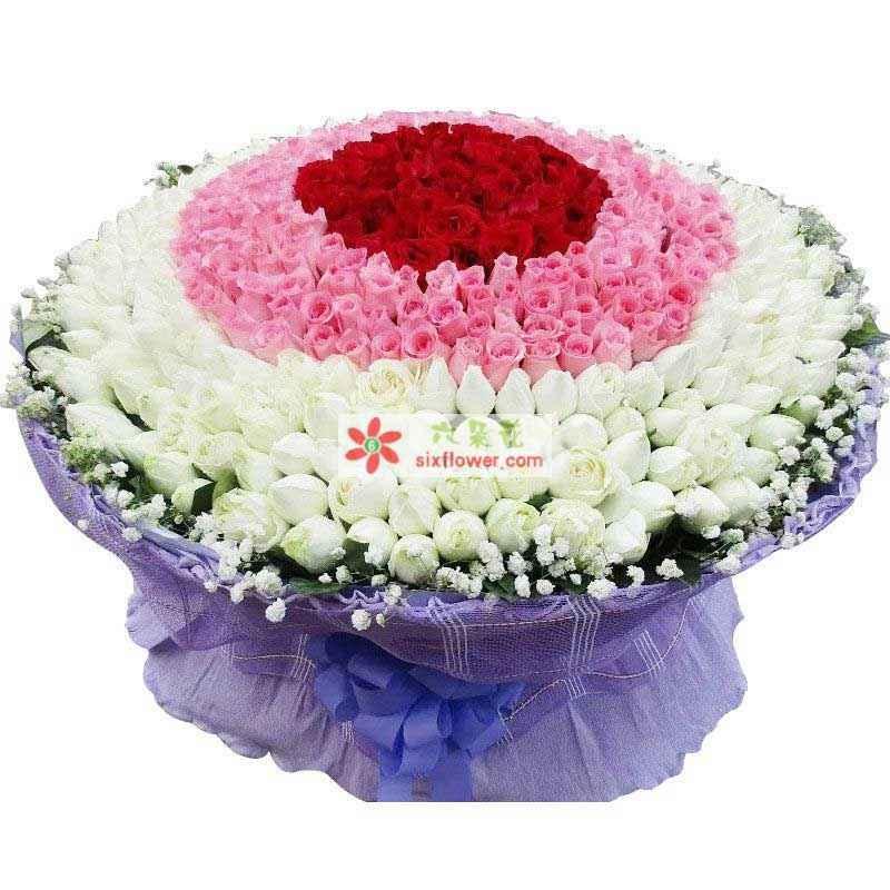 280枝白色玫瑰,180枝粉色玫瑰,60枝红色玫瑰,周围满天星点缀