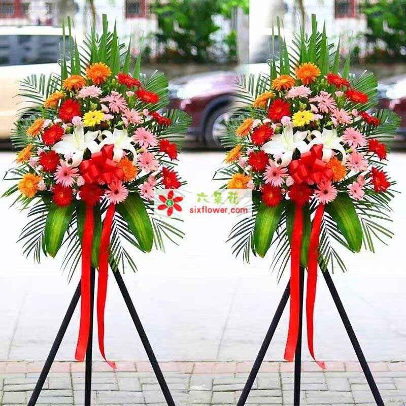 各色太阳花、2朵白色百合,散尾葵、巴西叶搭配(价格为单个花篮的价格)