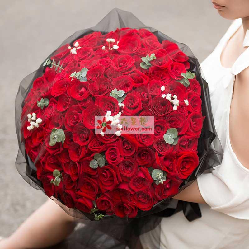 99枝优质红玫瑰,尤加利、满天星间插