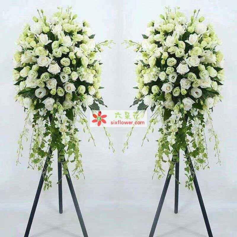 白色玫瑰,洋桔梗,洋兰等搭配;