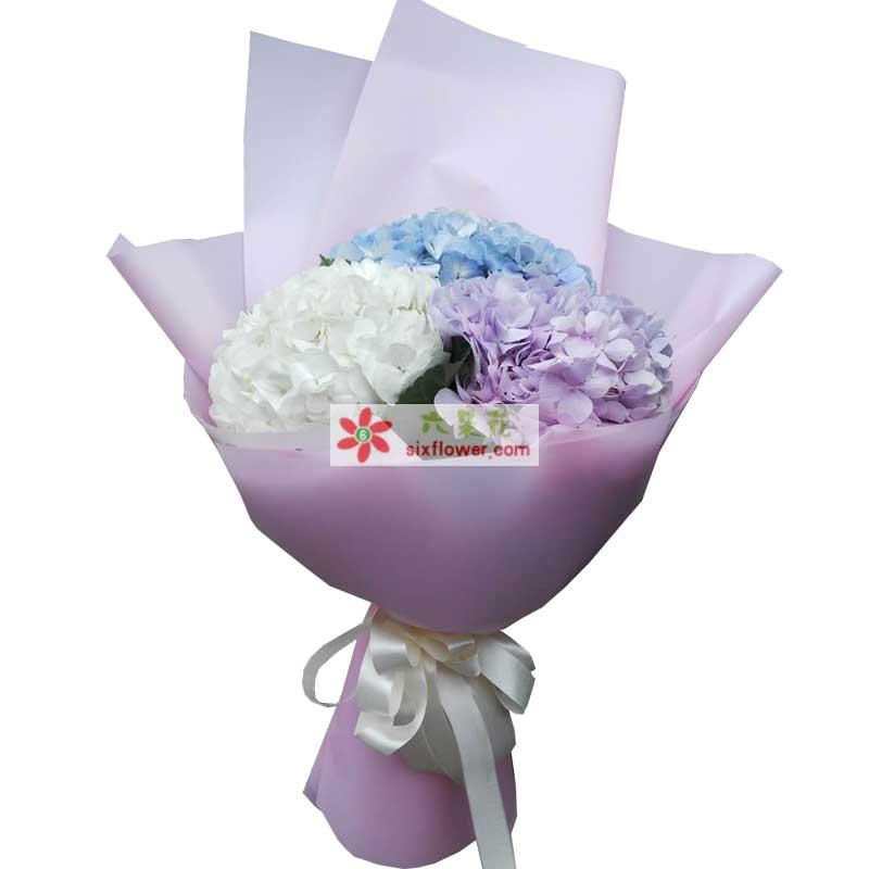 3只绣球花,紫色、白色、蓝色各一只,配叶点缀