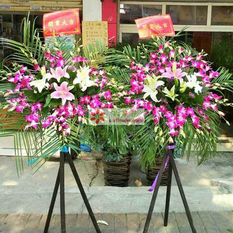 6朵百合(粉色,白色各3朵)、紫罗兰周围丰满,散尾葵等搭配