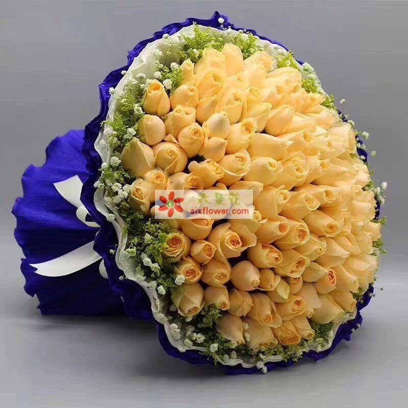 99枝香槟玫瑰,周围满天星黄英点缀;