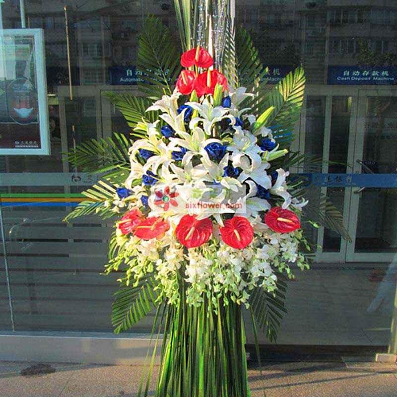 24朵白百合、19枝蓝玫瑰、5片红掌,白色洋兰为主,散尾叶等搭配