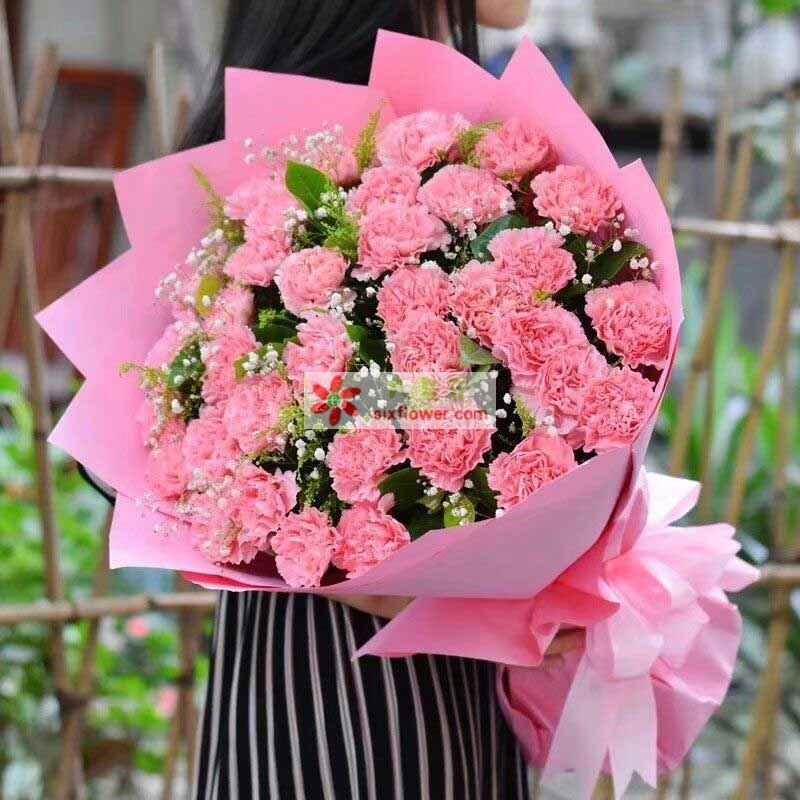 28枝粉色康乃馨,满天星、橛子叶丰满