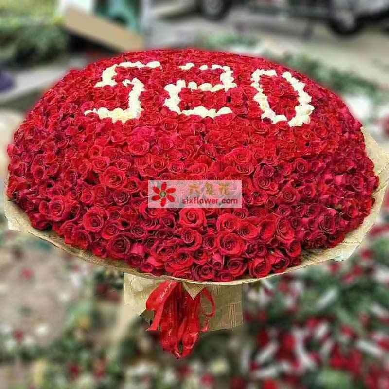 """365枝玫瑰,其中白色玫瑰组成""""520""""字样"""