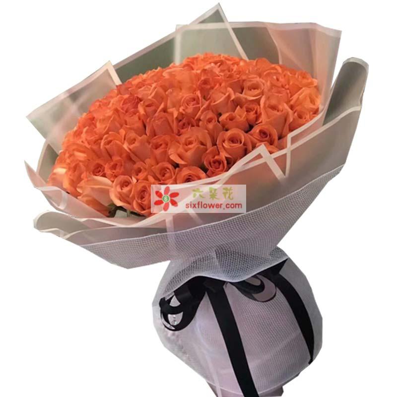 66枝粉色玫瑰